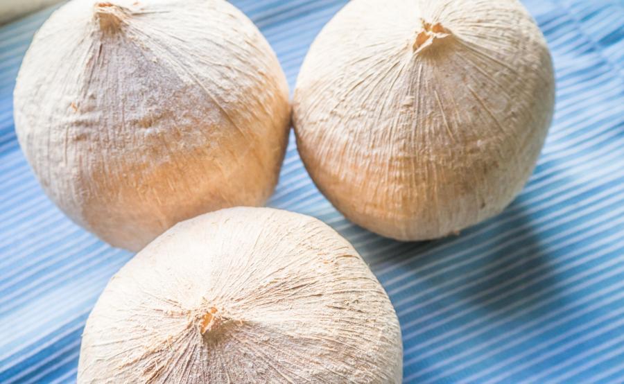 Młody kokos nie tylko dla sportowców