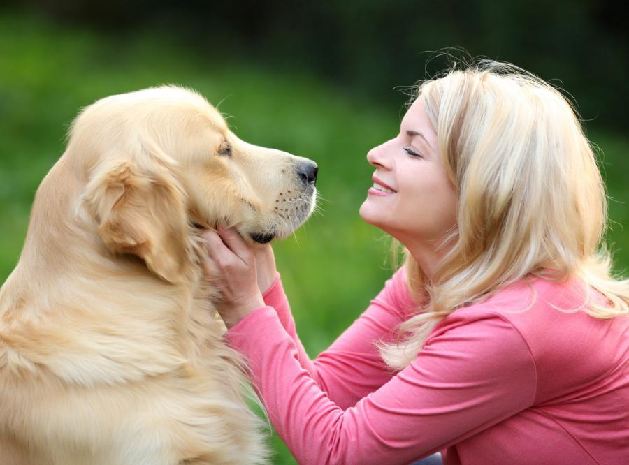 Ucz się miłości od... psa