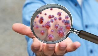 Bakterie i wirusy na dłoni