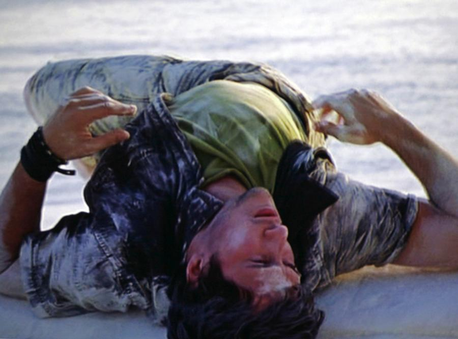 Isaac Julien: od baletu do antynarracji