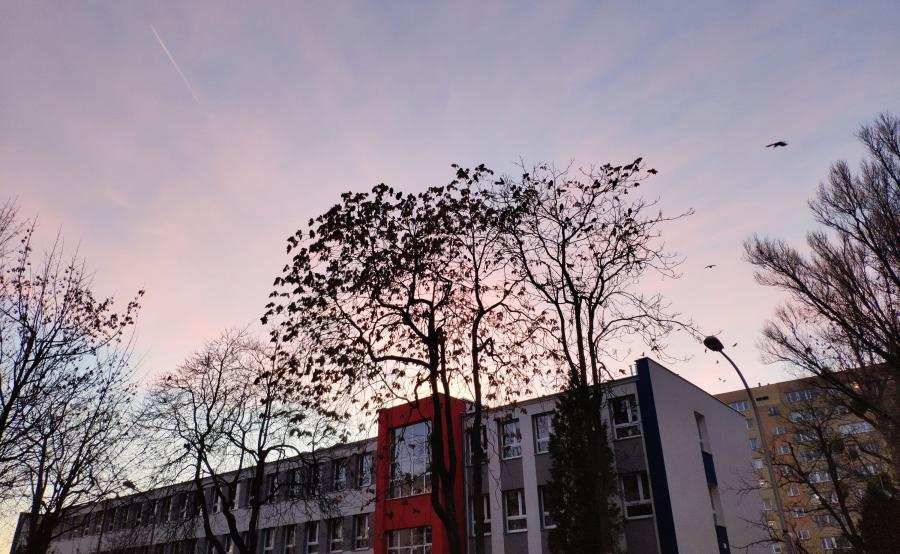 Zdjęcie zrobione telefonem Mi 8 Pro