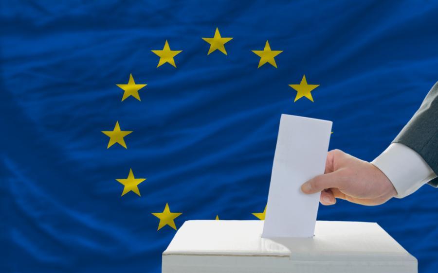 wybory do europarlamentu PE