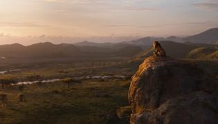 """""""Król Lew"""" w kinach 19 lipca 2019 roku"""