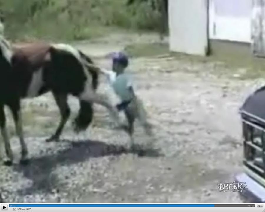 Nie podchodź do konia od tyłu, no nie podch...