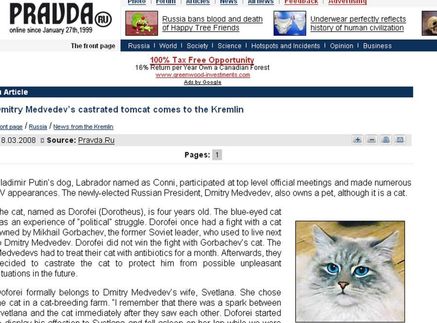 Kot Miedwiediewa wygryzł psa Putina