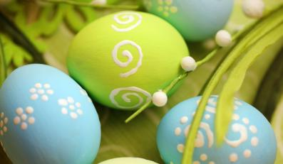 W Warszawie zbierane będą jajka