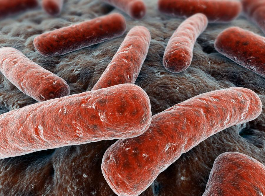 Lawinowo zwiększa się zachorowalność i śmiertelność, bo bakterie są coraz bardziej oporne na leczenie