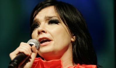 Björk: Wolę folk