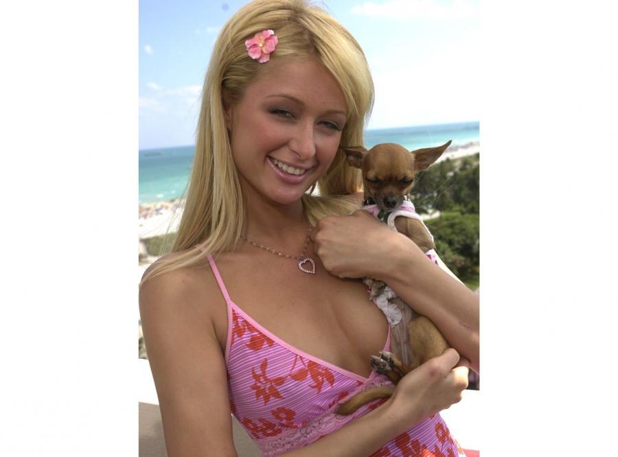 Paris Hilton z psem