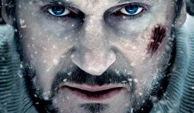 """Liam Neeson w """"Przetrwaniu"""" już w kinach"""