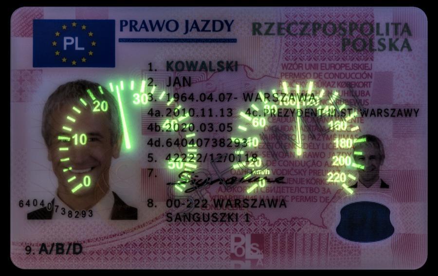 Wzór dokumentu prawa jazdy