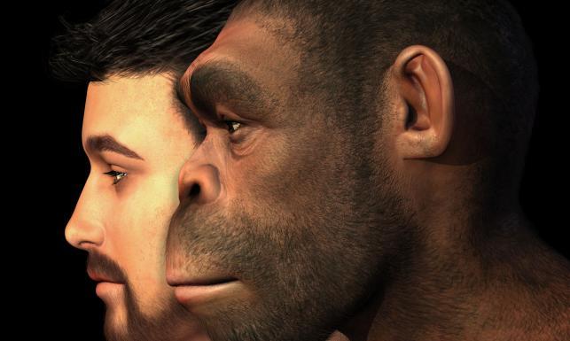 10 błędów ewolucji. Te zmiany mszczą się na naszym zdrowiu