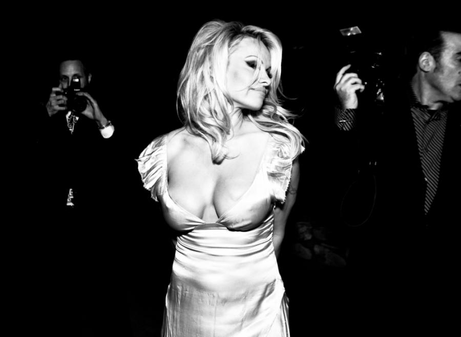Pamela Anderson nową gwiazdą Herzoga?