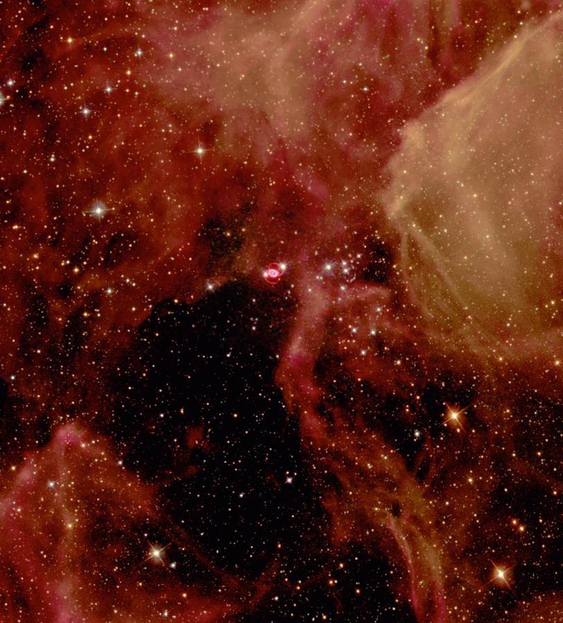 Supernowe zasilają cały kosmos w rózne pierwiastki, które nie mogłyby powstać w żaden inny sposób