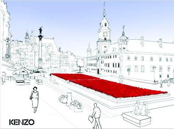 150 tys. maków wyrośnie w środku stolicy