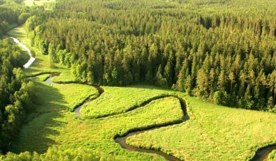 Dolina Rospudy uratowana