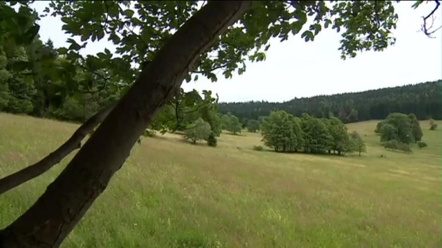 Wieś w Kotlinie Kłodzkiej