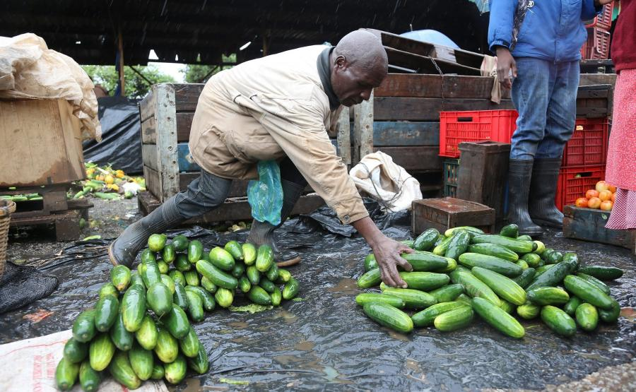 DUR BRZUSZNY CORAZ TRUDNIEJSZY DO OPANOWANIA W ZIMBABWE